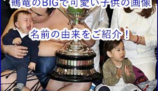 横綱・鶴竜に子供はいるの?!BIGで可愛い子供の画像をご紹介!