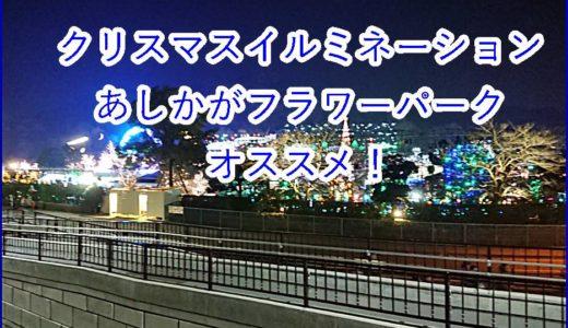 クリスマスイルミネーション2019は東京から120分のあしかがフラワーパークがオススメ!