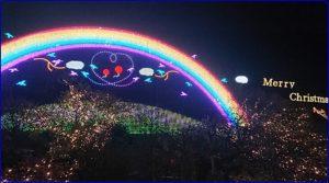 クリスマスイルミネーション2019あしかがフラワーパーク