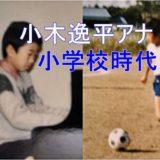 小木逸平アナに兄弟はいる?アナウンサーになったキッカケは小学校の頃の姉にあり!