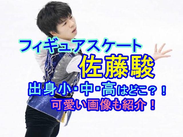 フィギュアスケート佐藤駿の小・中・高校はどこ?スケートは何歳から?可愛い画像と共にご紹介!