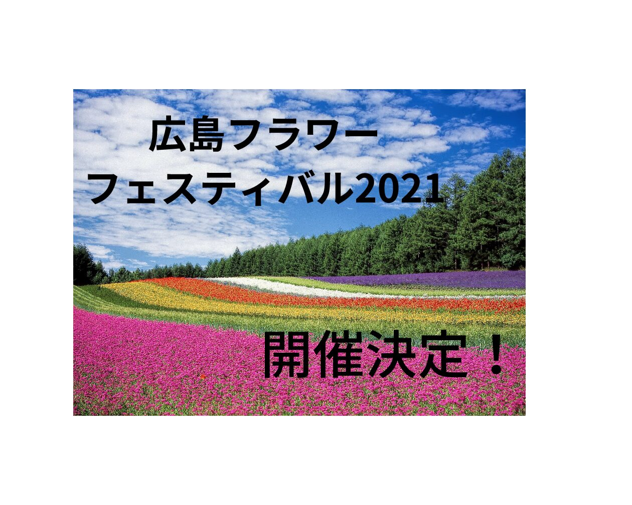 【G.W】広島フラワーフェスティバル2021は規模縮小で開催!日程やイベント内容を詳しくご紹介!