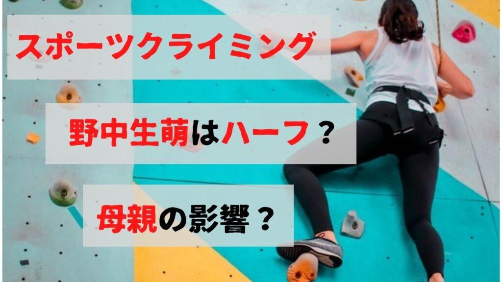 スポーツクライミングで活躍するハーフのように可愛い野中生萌