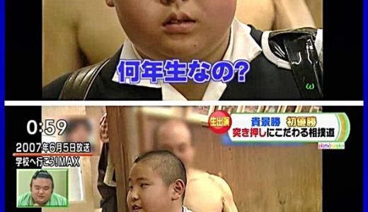 貴景勝のちびっこ相撲の小学校から初優勝までの【かわいい㊙画像あり】美人教育ママ母ぶりも大暴露