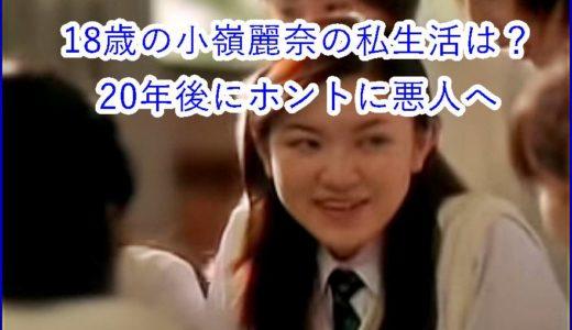 【動画あり】18歳の小嶺麗奈の私生活は?覚醒剤防止CM悪役を演じ20年後にリアル逮捕な皮肉を解説