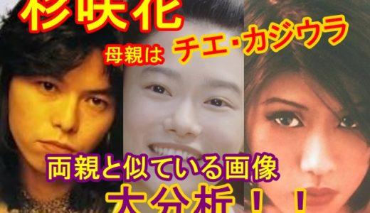 杉咲花の母親は美人ミュージシャンのチエカジウラ!画像で両親と似ているところを大分析!