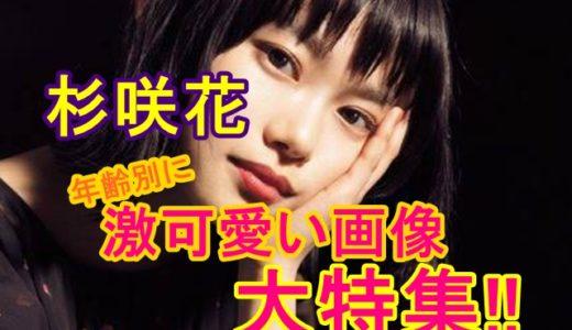 杉咲花の年齢別に激可愛い画像を大特集!2歳の頃から大きい耳としっかり眉も大公開!