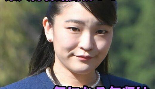 眞子さまの結婚後の仕事も東大博物館で勤務?気になる給料や仕事内容や仕事環境を詳しくお伝えします!