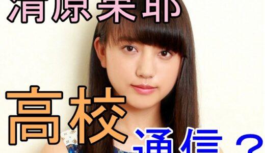 清原果耶はやっぱり通信制高校出身?大活躍若手女優の多忙すぎる学生時代を大調査しました!