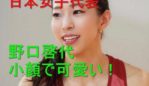 スポーツクライミング日本女子代表の野口啓代は小顔で可愛い?チャーミングで鋭い目がまた素敵!